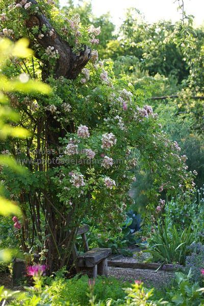 Alsace Jardins Champetres Idees Jardin Jardins