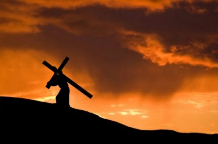 """We were placed on earth to glorify God. Follwing Jesus through difficult times, builds our character and faith. Matthew 16:24-27 Then Jesus said to His disciples, """"If anyone desires to come after Me, let him deny himself, and take up his cross, and follow Me. For whoever desires to save his life will lose it, but whoever loses his life for My sake will find it. For what profit is it to a man if he gains the whole world, and loses his own soul? Or what will a man give in exchange for his…"""