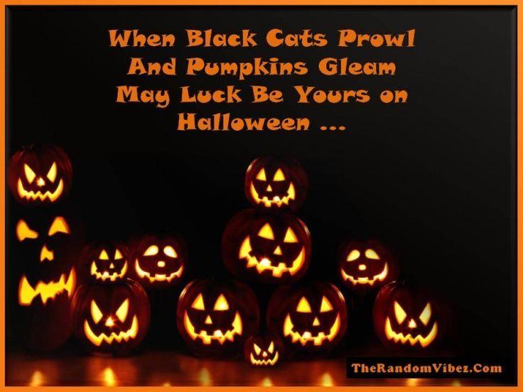 Gruselige Lustige Gluckliche Halloween Zitate Halloween Quotes Gluckliche Gruselige Halloween Halloweenzitate Lustige Quotes