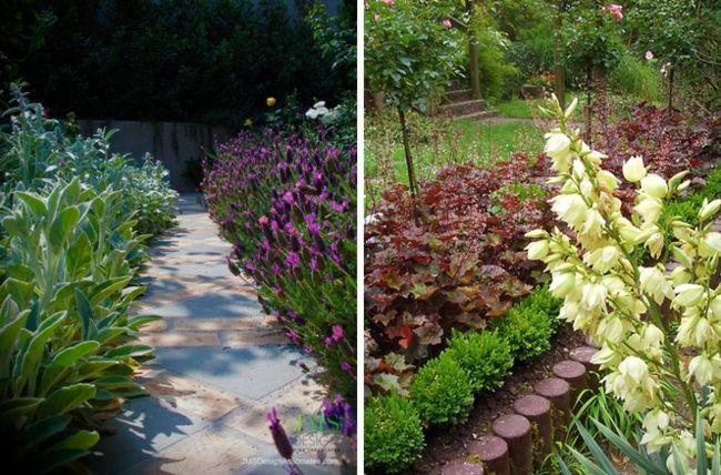 Garten Gestaltung \u2013 den Gartenweg mit Blumen und Pflanzen umranden - garten blumen gestaltung