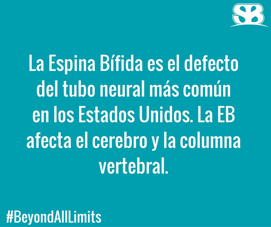 "Spina Bifida means ""Split Spine""...#BeyondAllLimits for #SpinaBifida Awareness Month 2016"