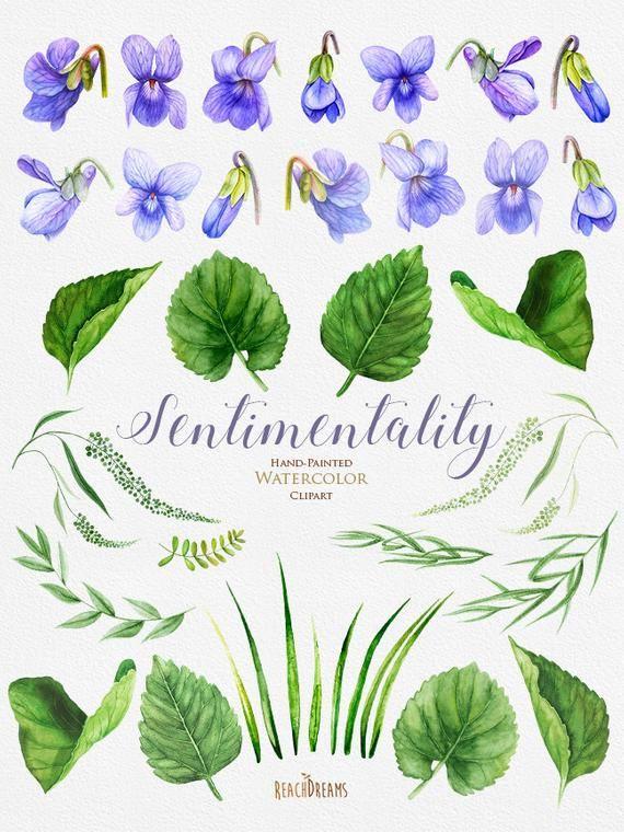 Viola Flowers Watercolor Clipart Floral Violet Wedding | Etsy