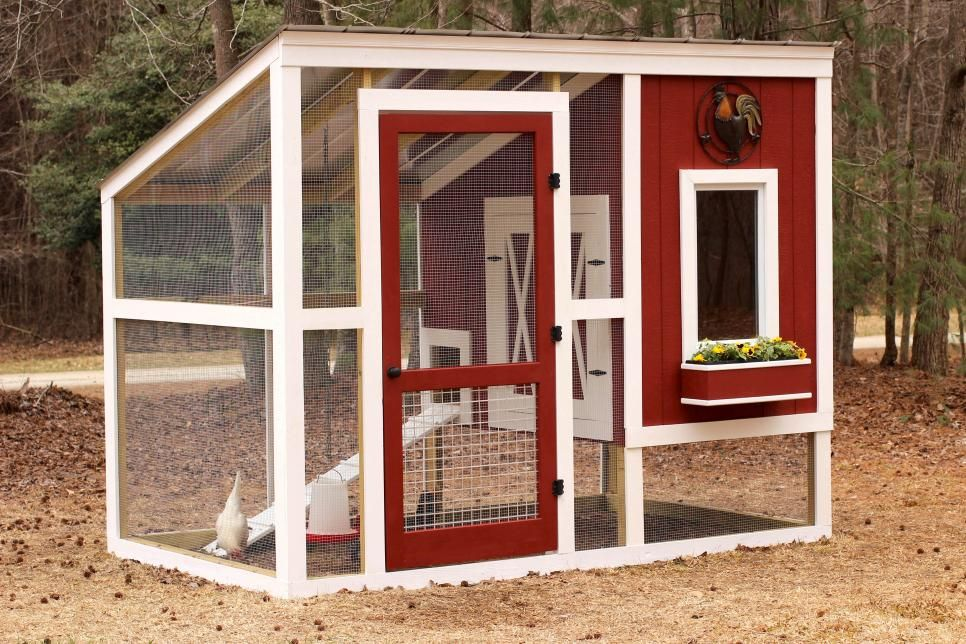 build your own custom chicken coop | hgtv | all about chickens