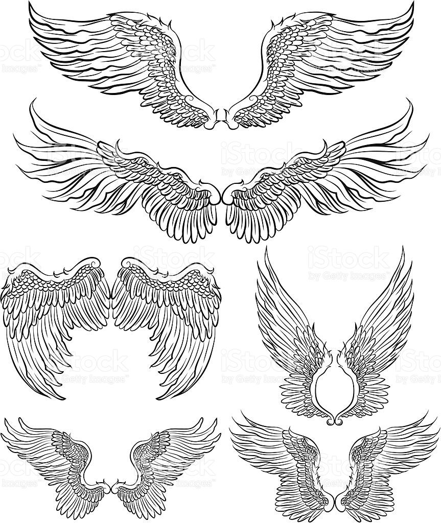 Flügel Tattoo Vorlage Set Of 6 Wings Angel Wings Design Elements