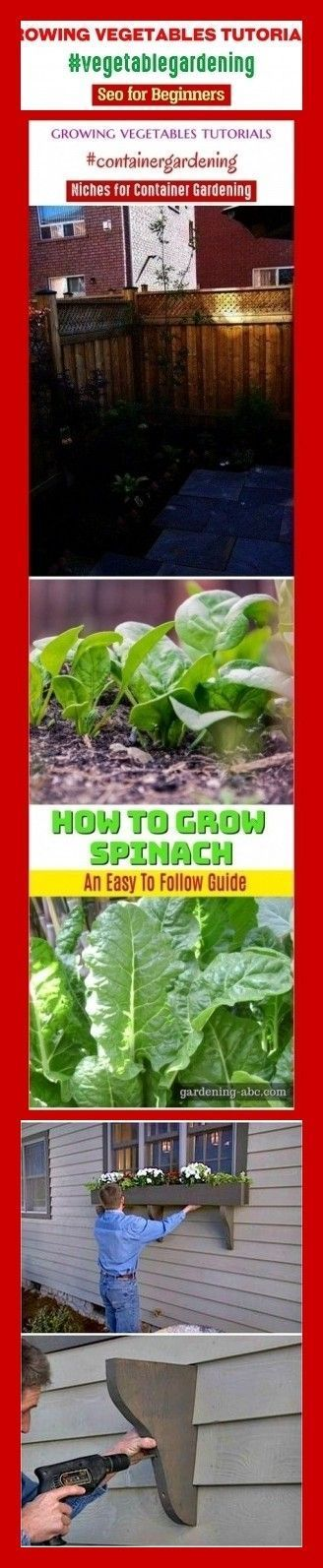 Tutorials zum Anbau von Gemüse #vegetablegardening #niches #seo #keywords #gardens …   – greenhouse gardening