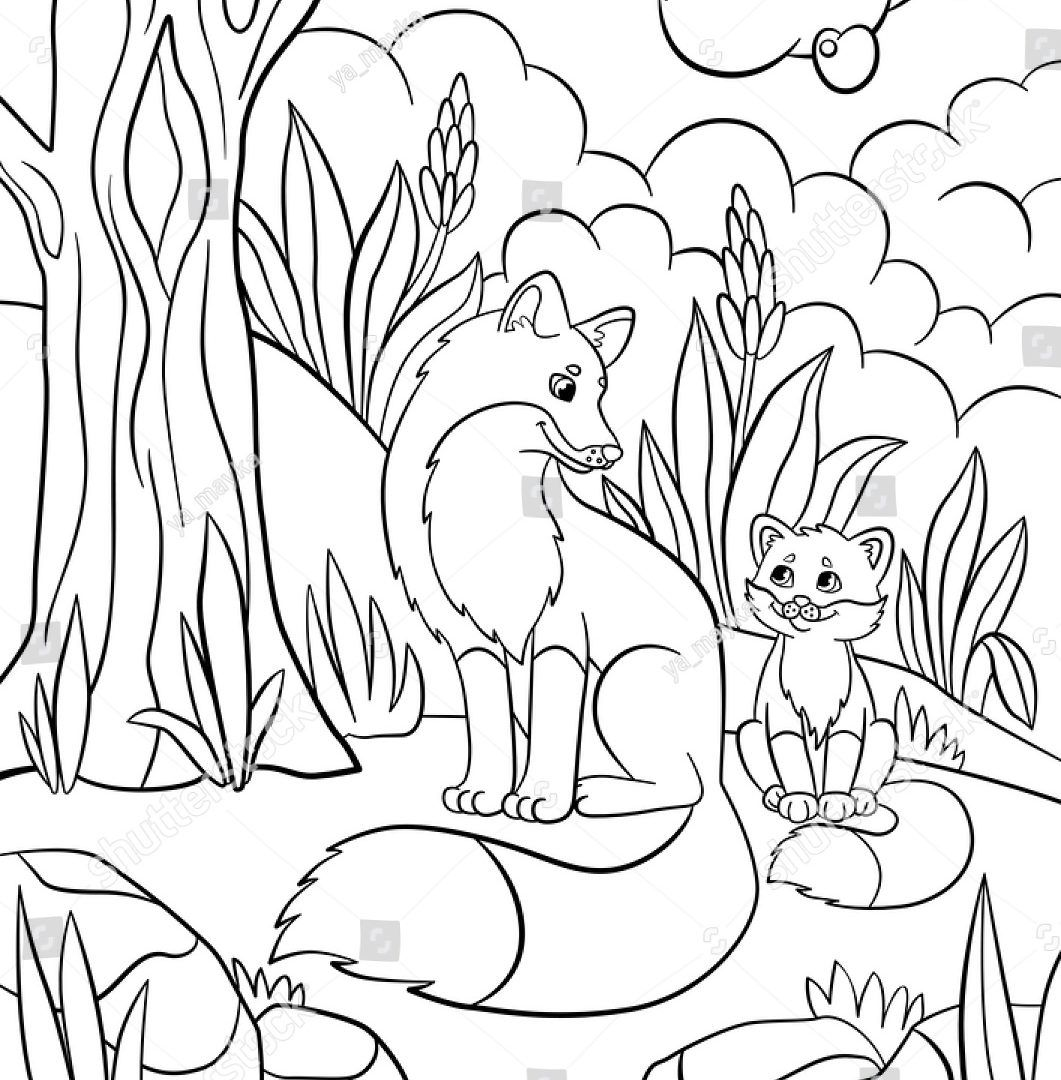 Image Result For Forest Animals Coloring Pages Animal Coloring Pages African Animals Animal Illustration Art