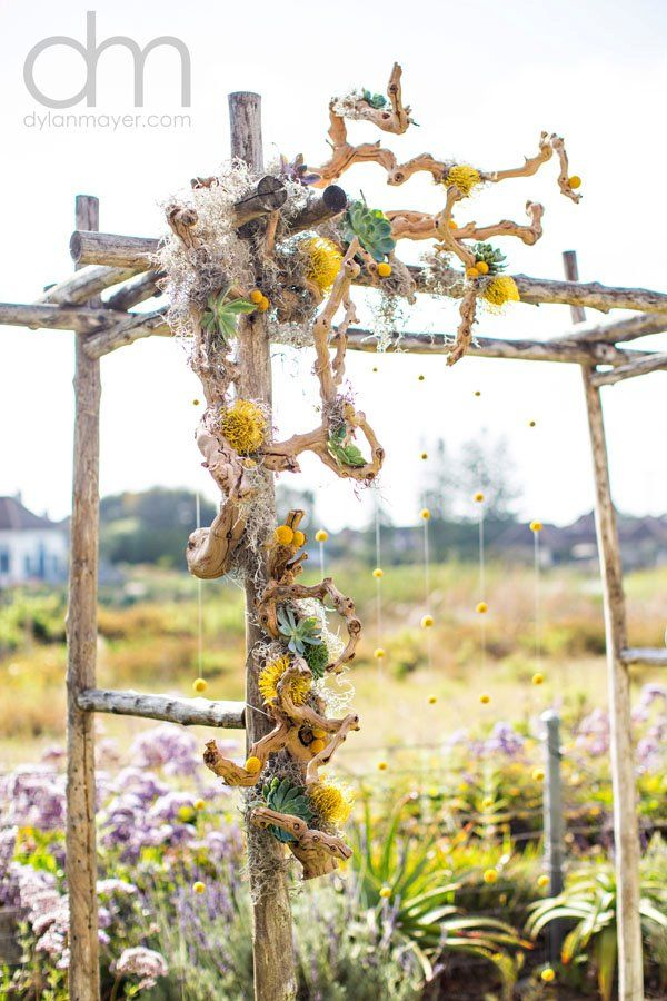 Succulent driftwood arch and hanging billy balls! Love it!