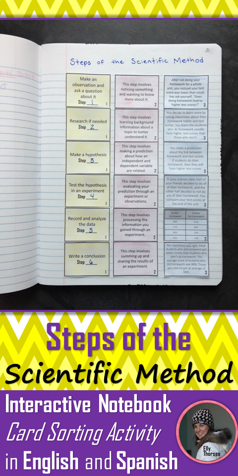 Steps Of The Scientific Method Card Sorting Activities In English And Spanish Scientific Method Middle School Science Resources Sorting Activities