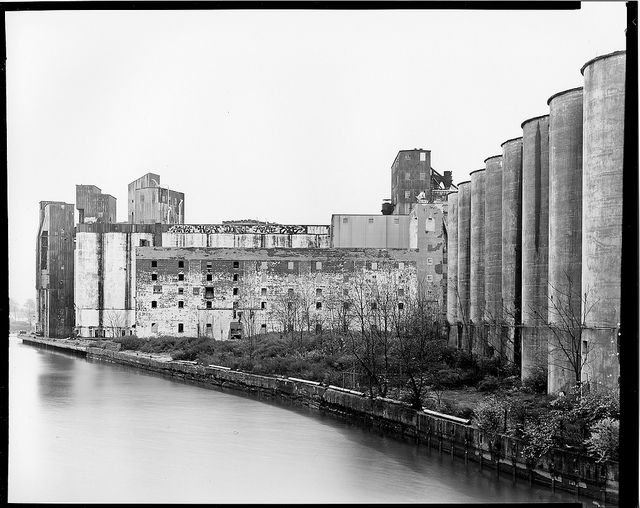 General Mills Buffalo Ny The Old Days Horse Farms Contact Print