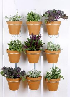 'Pottys' - new design for hanging pot plants on your fence ...