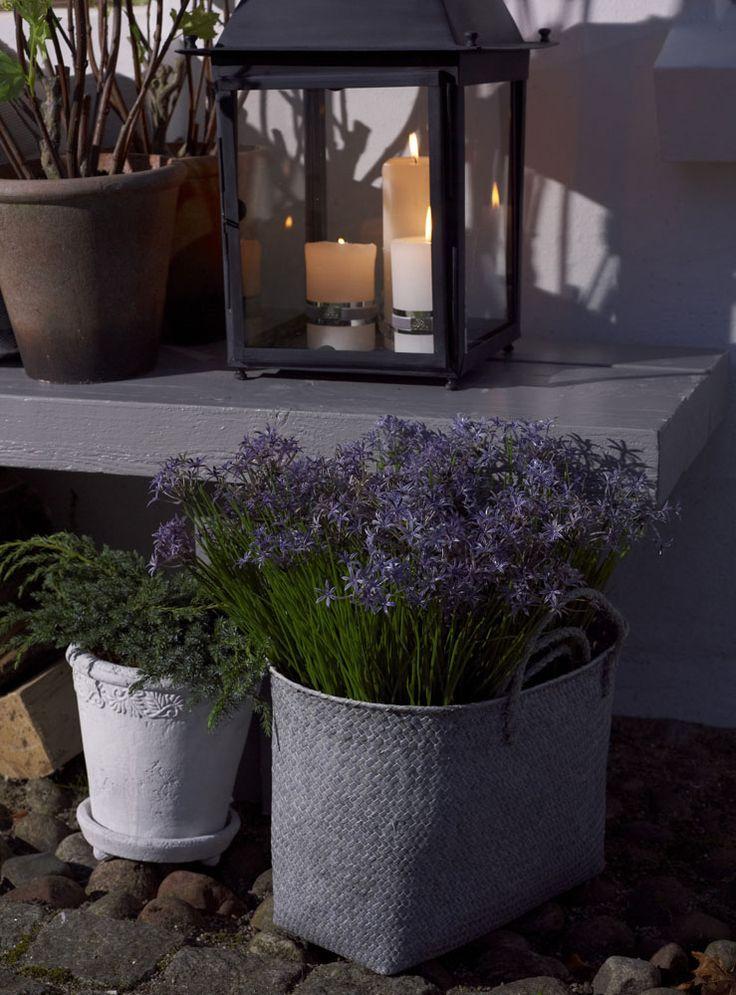 Lene Bjerre SPRING 2013. KAMILLA basket, WISTERIA flower