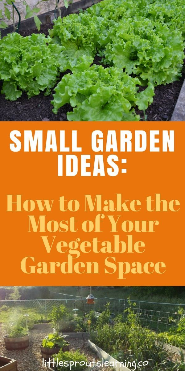 Small Garden Ideas How to Make the Most of Your Vegetable Garden Space is part of Small garden Kids - SMALL GARDEN IDEAS Sometimes it's hard to find enough space to grow everything you'd like to  There are some clever ways to grow more things in a smaller space, or even in your front yard landscaping if you just look for them  Check out these small garden ideas to make the most of your vegetable garden space