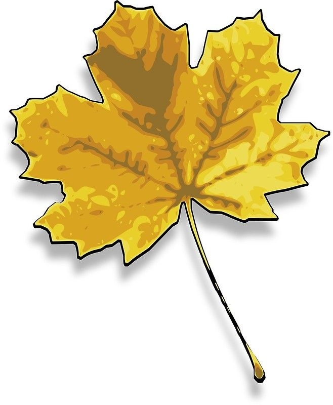 Another Maple Leaf Imagine Smile Color Art Photographic Print By Greengoodnich Colorful Art Clip Art Art