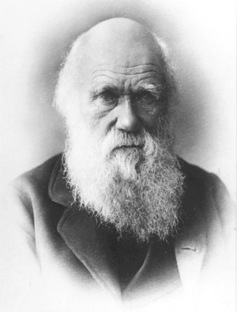 Darwin Facts Charles Darwin Robert Darwin Theory Of Evolution