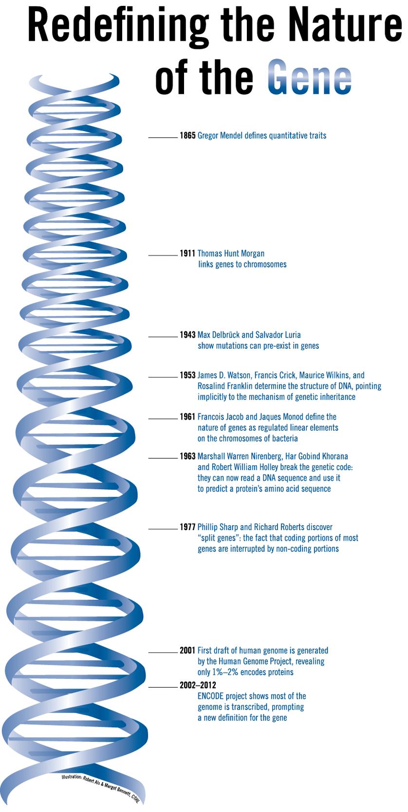 pin by kirsley chennen on dna | pinterest | genetics, molecular