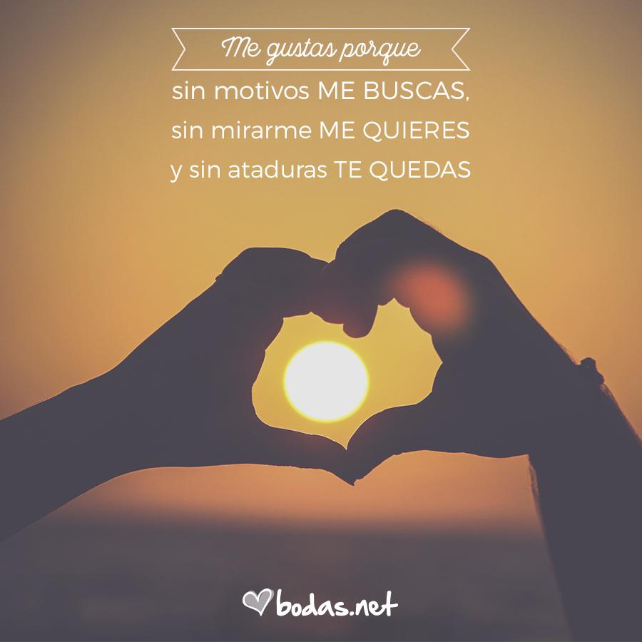 23 Frases De Amor Para Dedicar A Tu Pareja Frases Emotivas