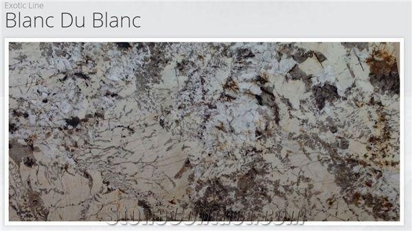 Blanc De Blanc Granite Google Search Kitchen Counter Kitchen Countertops Granite