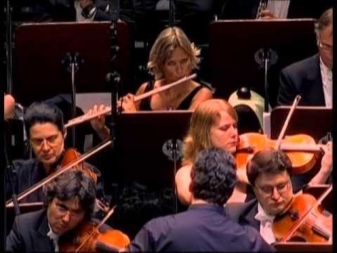 Often A Bird Wim Mertens Youtube Inspirational Music Music Composers Music Videos