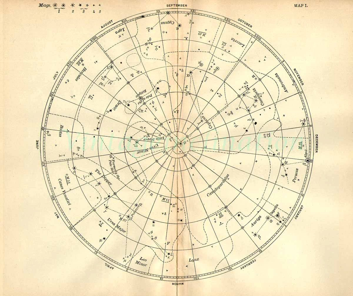 1897 Vintage Star Chart Beautiful Celestial Map Constellations