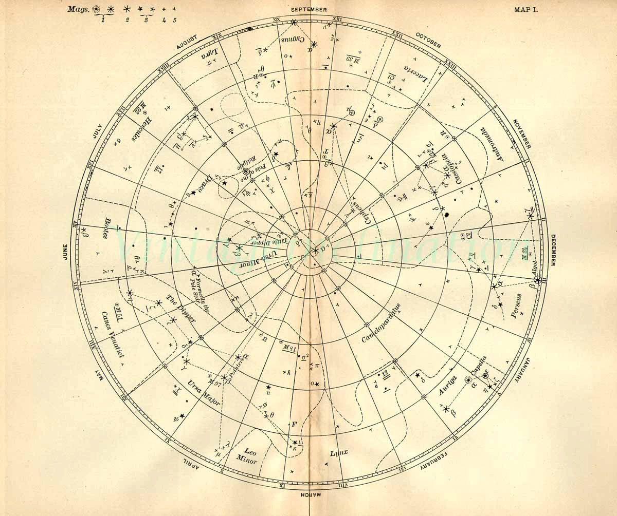 Vintage Star Chart Beautiful Celestial Map