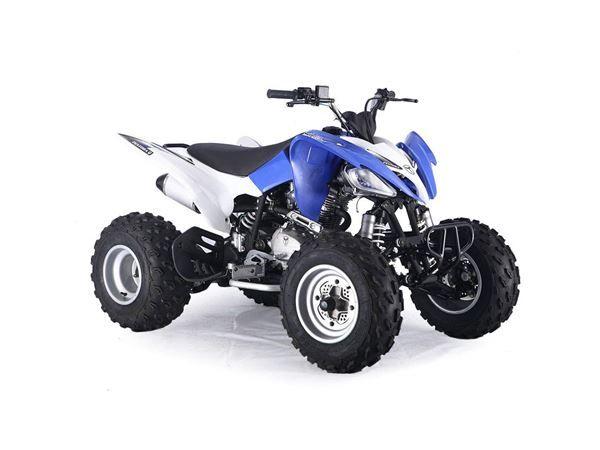 Pentora Sports 250cc Blue Young Adult Quad Bike Quad Bike 250cc