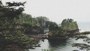 Image result for Cape Flattery, Washington