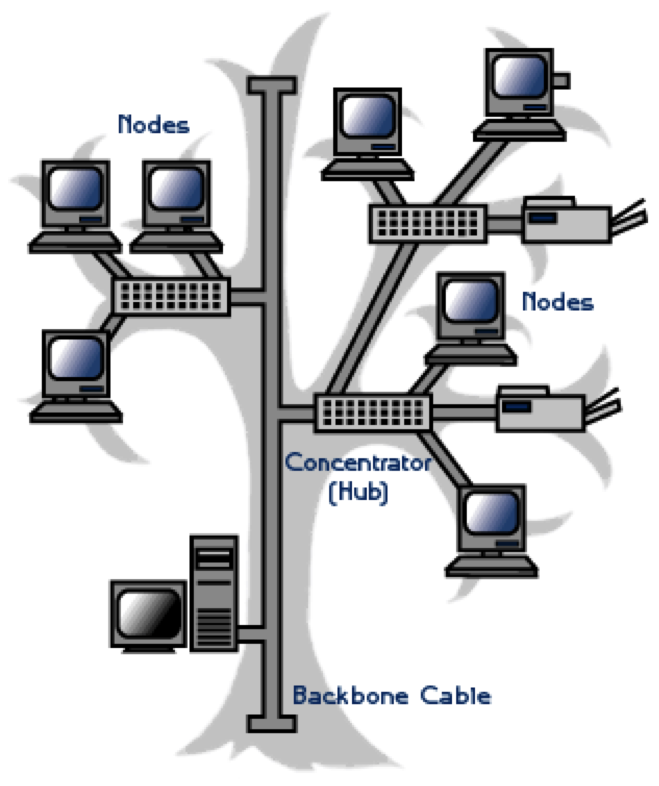 tree topology computer network