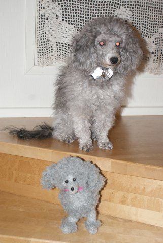 amigurumi poodle, my poodle, and crochetted poodle curtains- soo poodle