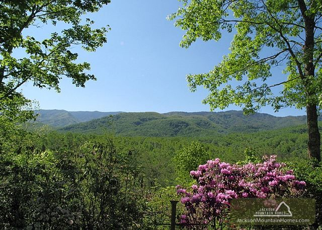 Seneca - This 1 bedroom cabin has a view of the Smoky Mountains that is just breathtakingly beautiful... http://www.jacksonmountainhomes.com/rental/house.html?ID=24&Avail=&Stay=&User=JAX6233