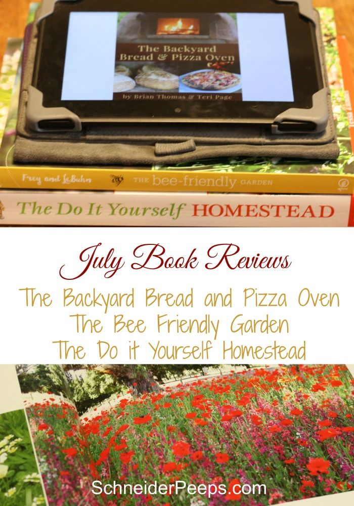 Backyard bread and pizza oven diy homestead and the bee friendly the july book reviews include the backyard pizza and bread oven the do it yourself homestead and the bee friendly garden all three of these books were solutioingenieria Choice Image