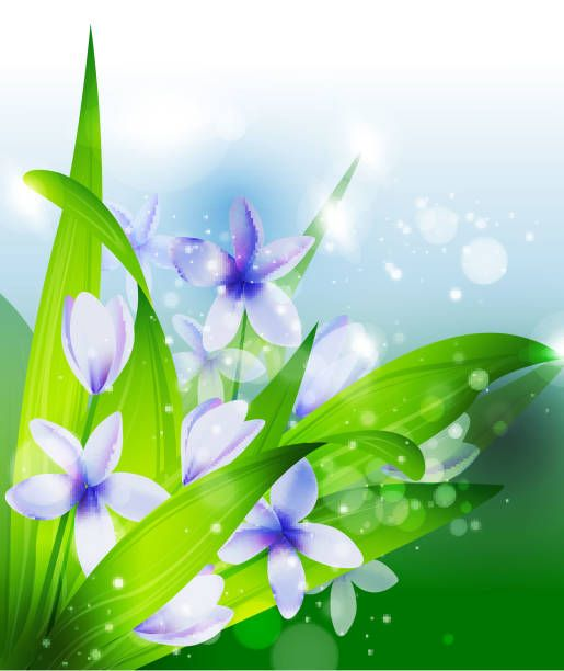 Beautiful flower background wallpaper hueputalo pinterest beautiful flower background wallpaper mightylinksfo