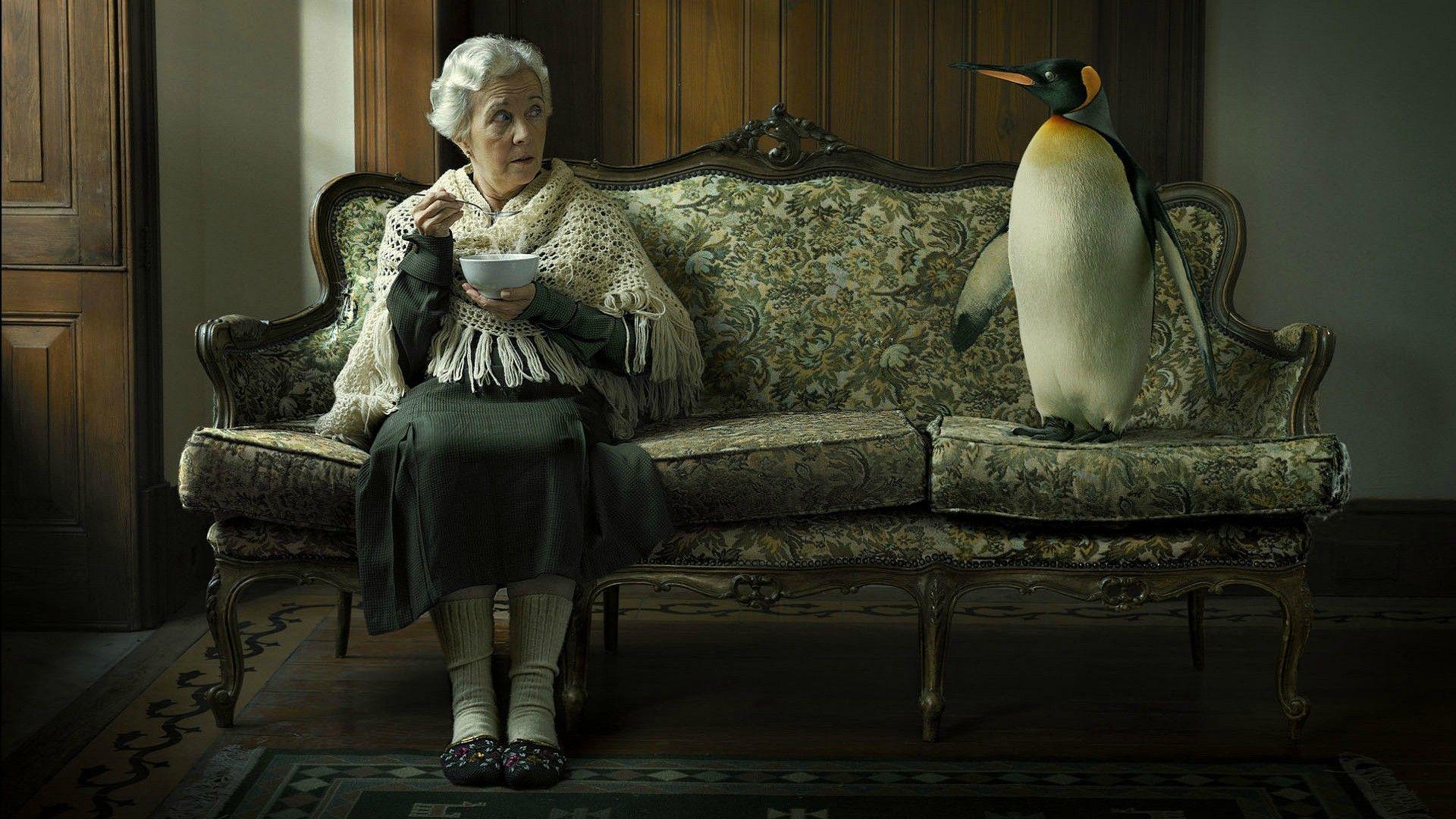 Anciana sentada, cenando en un sofa junto a un pingüino Emperador (Aptenodytes forsteri). Humor Linux o habitacion fria. Fotomontaje by Estudio Platinum FMD Fotografia.