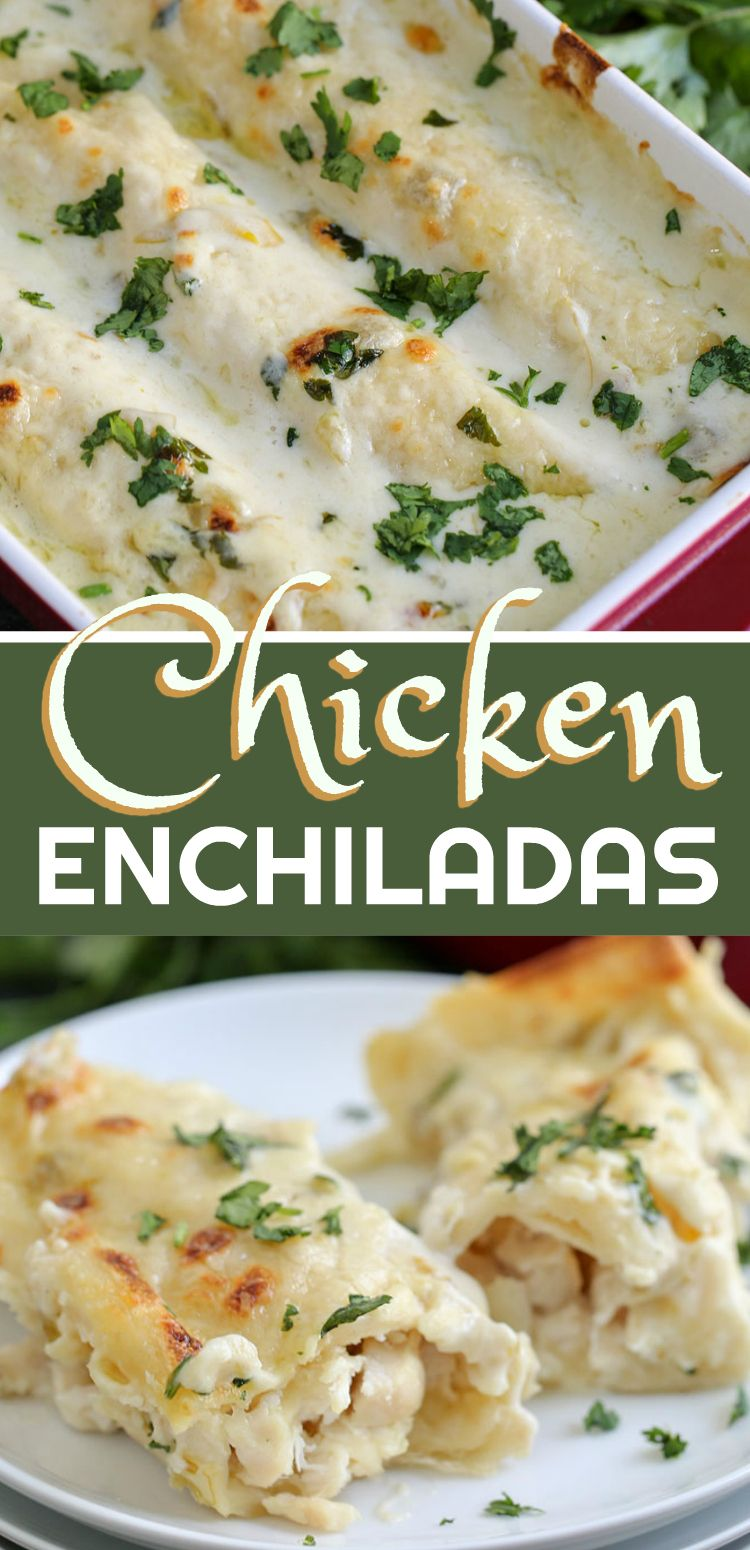 Chicken Enchiladas Creamy Chicken Enchiladas Recipe Chicken Recipes Chicken Enchilada Recipe