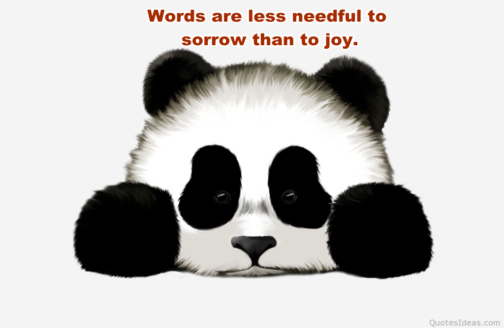 Panda Quotes Glamorous Panda Love Quotesquotesgram  Panda  Pinterest  Panda