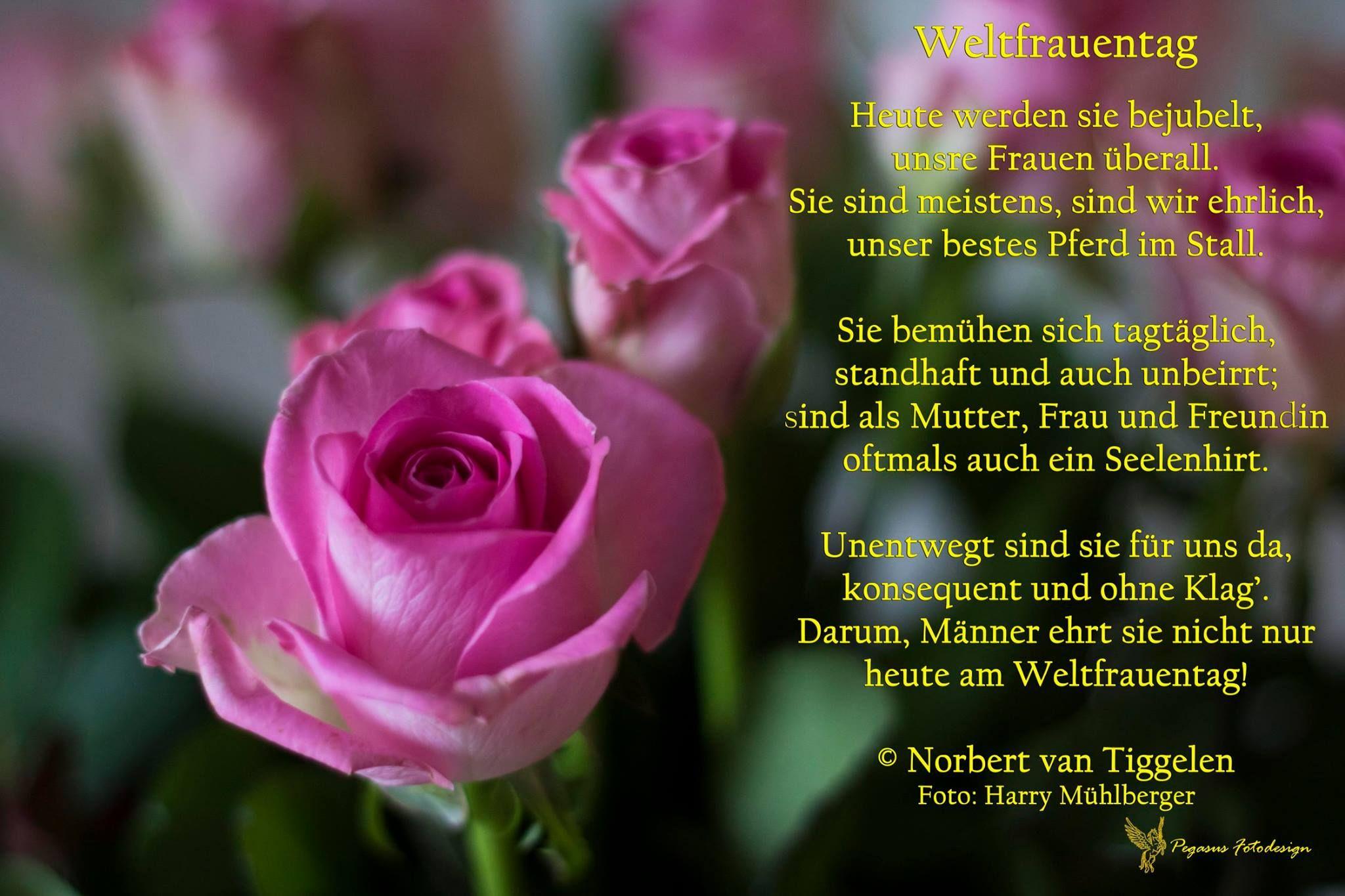 Achtung Am 8 März Ist Weltfrauentag Gedichte Mitten Aus