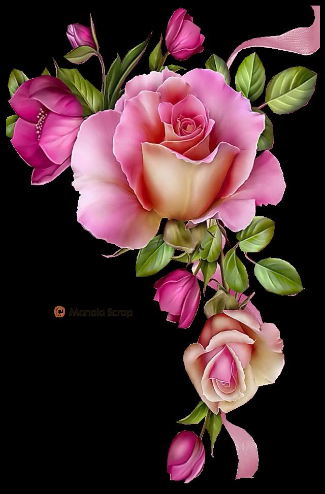 Pin By Birgith Hofvind On Blomster Fleurs Dessin Floral Fleur