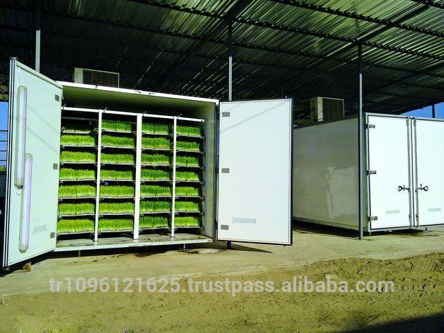 Hydroponic Growing Trays / Hydroponics Fodder / Hydroponic Fodder Machine
