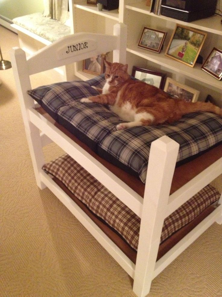 bunk bed cat condo easy do it yourself project cat bed cat bunk beds cats cat furniture. Black Bedroom Furniture Sets. Home Design Ideas