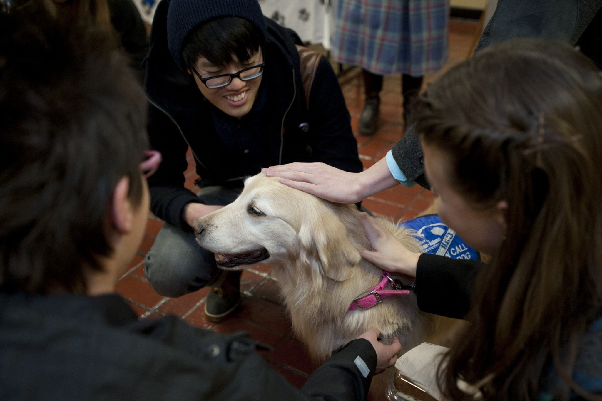 Colleges use dogs to help relieve the stress of finals. Animals can be good for the heart, too. (Washington Post, Dec 2014)