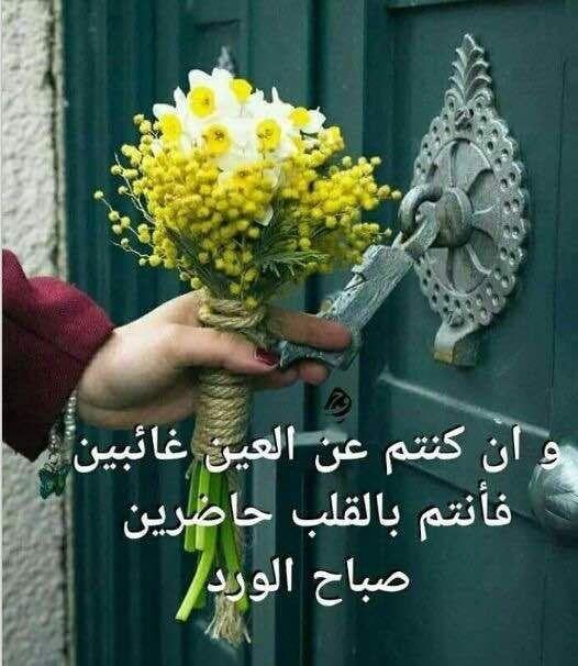 صبــاح مشـرق كـنور الشمس الساطع صبـاح ملـون بألوان الزهــور الجميلـة صبـاح السعـادة والمح Good Morning Photos Good Morning Arabic Good Morning Beautiful Images