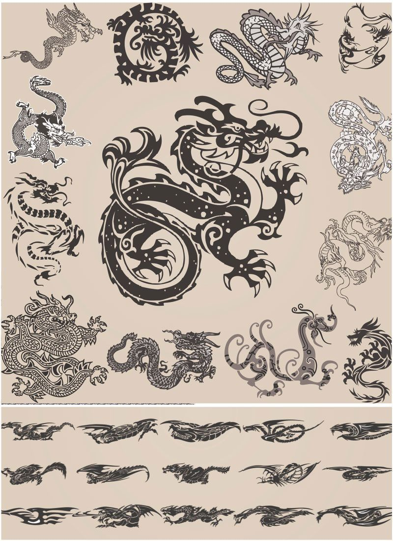 Chinese Dragon Ornate Vector