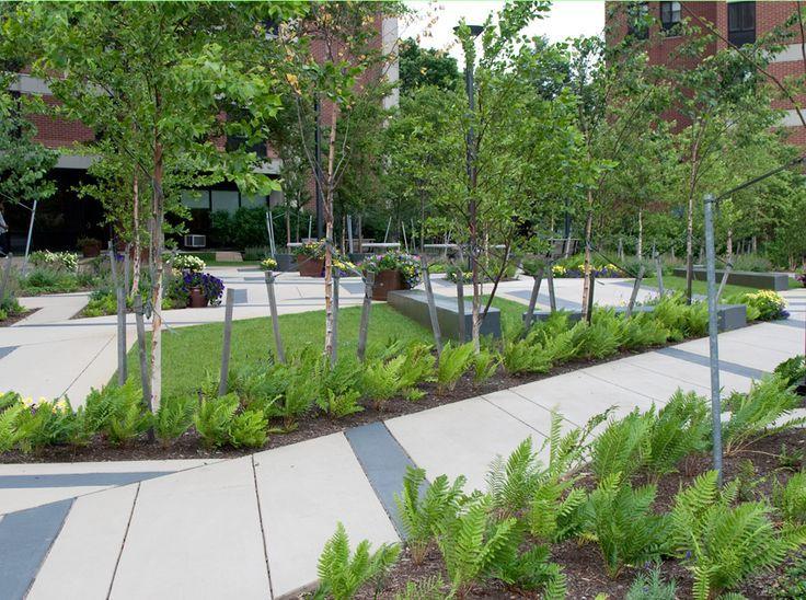 Landscape Modern Plaza