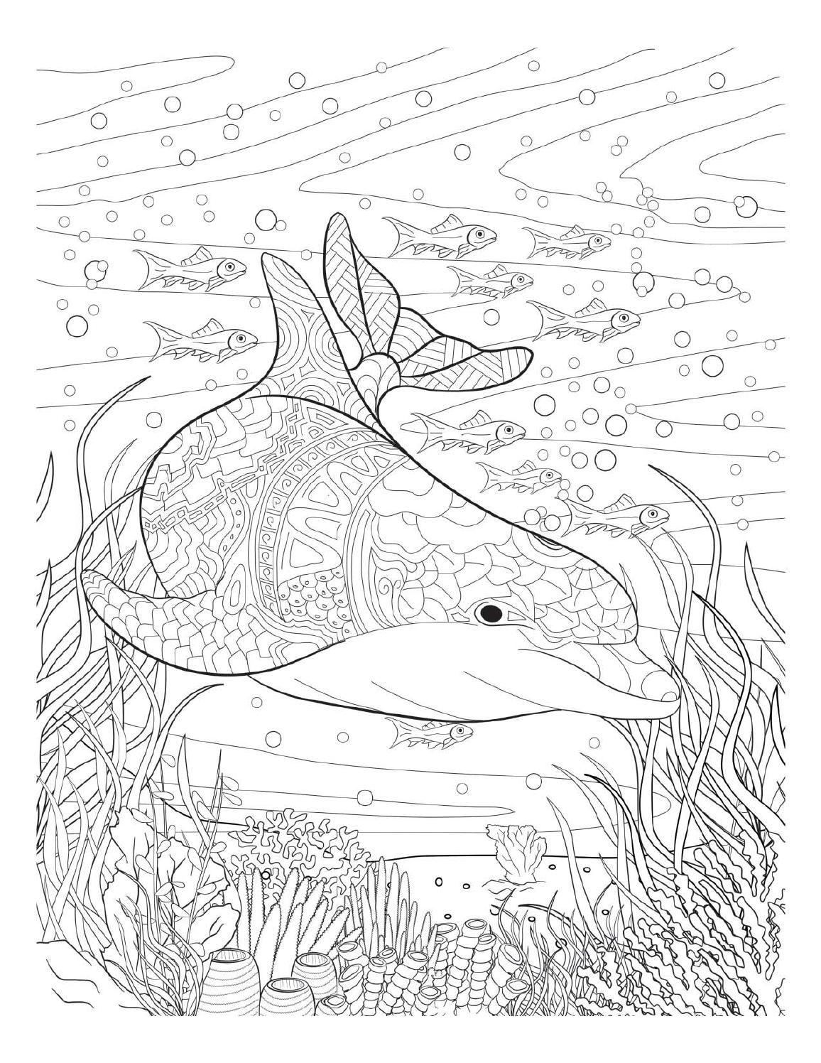 ausmalbilder erwachsene unterwasser  amorphi