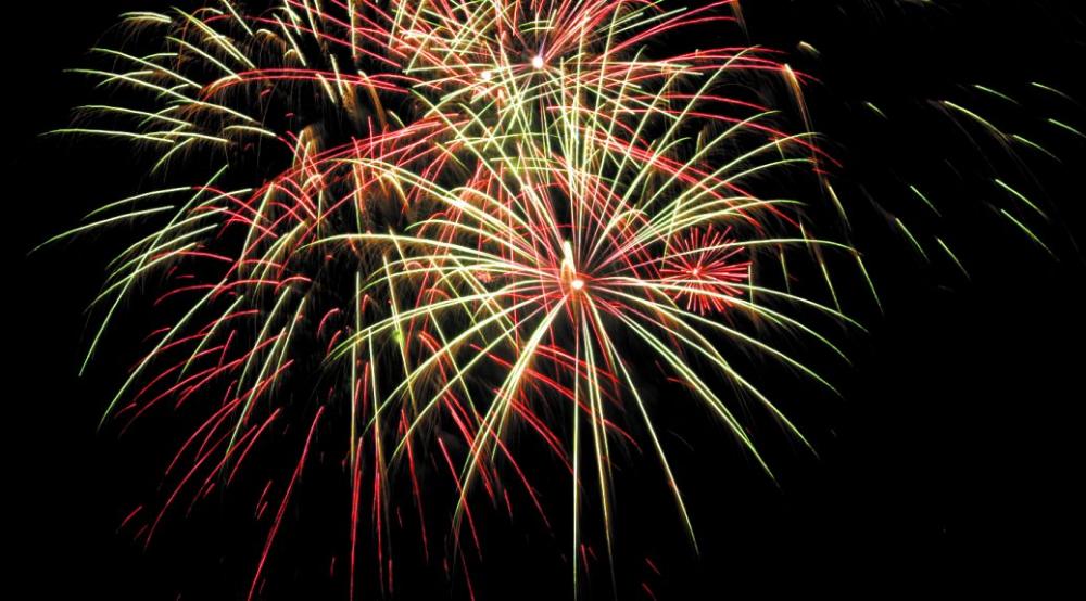 BEAULIEU FIREWORK SPECTACULAR 2019 Fireworks, Forest