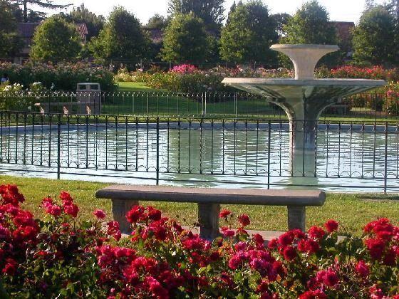 San Jose Municipal Rose Garden So Many Memories Here But No E Of Them With Roses Lol San Jose California California Treasures San Jose