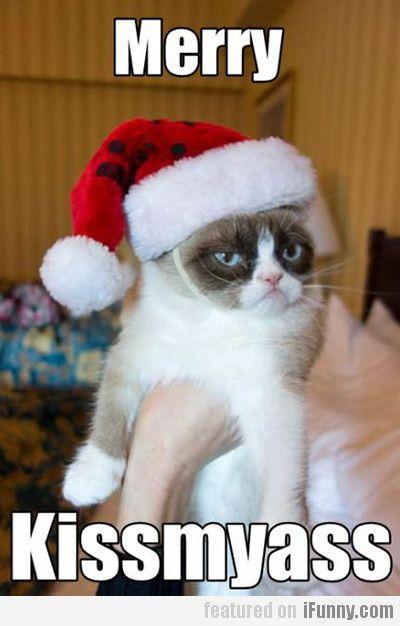 Merry Kissmyass Grumpy Cat Humor Grumpy Cat Christmas Grumpy Cat