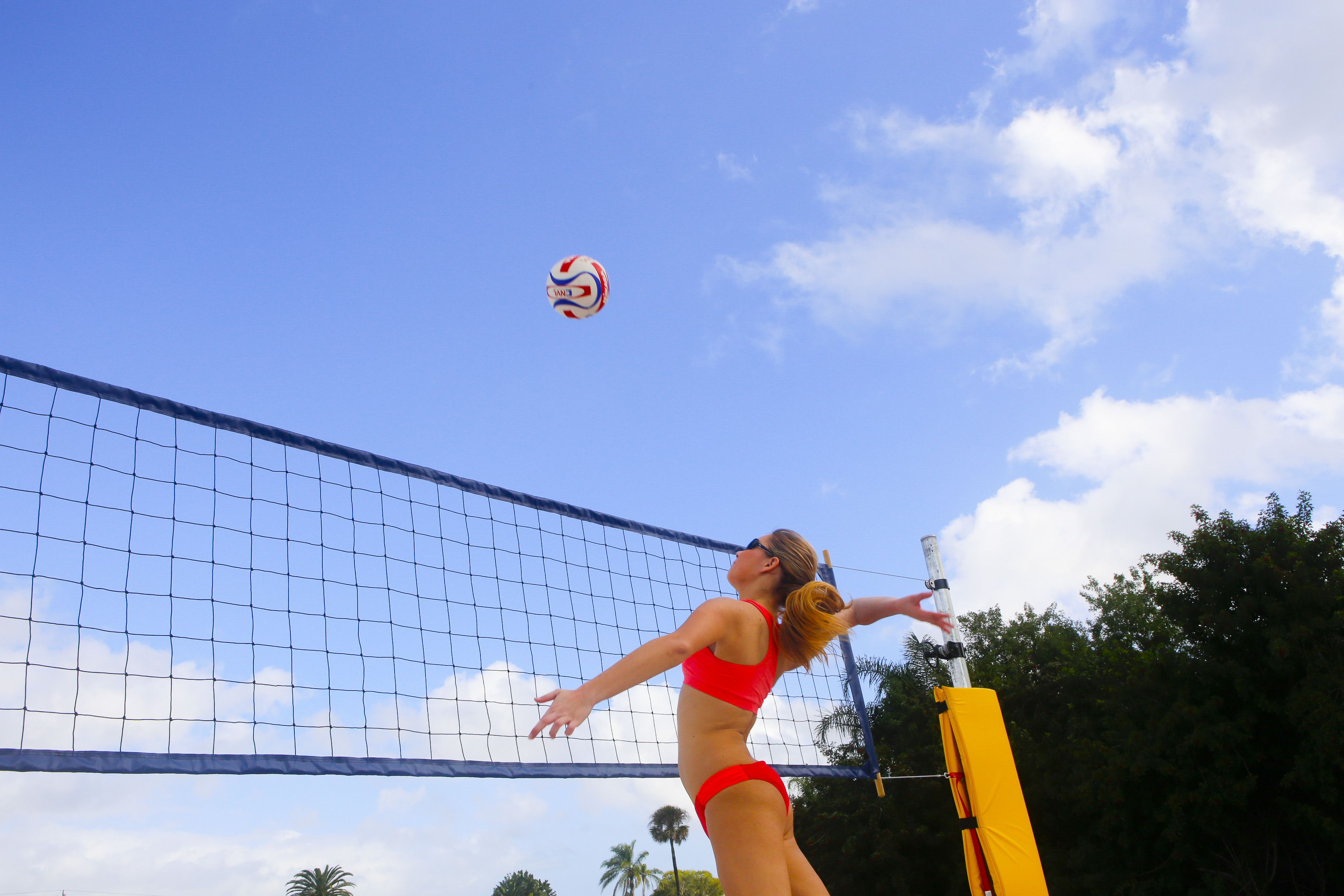 Oasis Beach Volleyball Home Facebook
