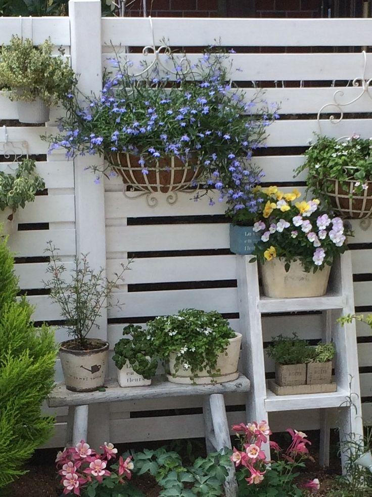 Pinterest   Balcony garden, Garden, Small courtyard gardens