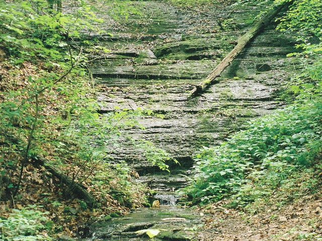 Group wants West Meade Waterfall to become city park
