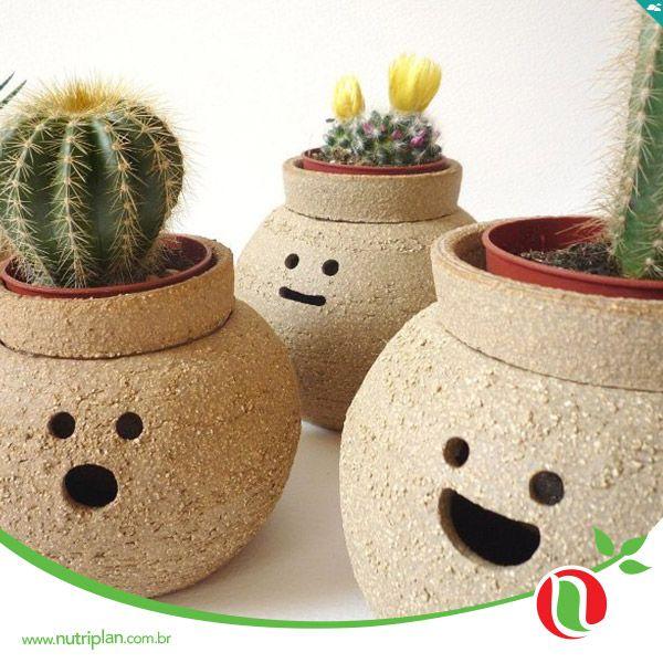 uma forma divertida de decorar a sua casa com os vasos terracota
